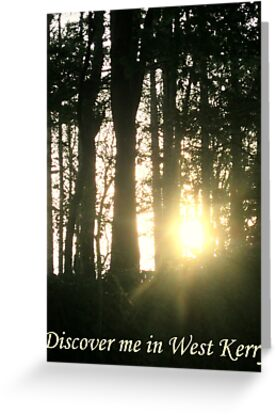 Discover me in West Kerry by mairead62
