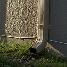 Downspout in the Morning Light by glennc70000