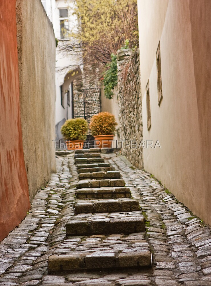 Stairs near the castle in the old town in winter, Bratislava, Slovakia, Eastern Europe, EU by Thibaut PETIT-BARA