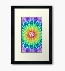 Rainbow Tie Dye 2 Framed Print