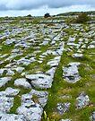Limestone Pavement in The Burren by Yukondick
