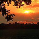 Sunrise Beauty by Susan Blevins