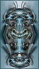 Scarab. by Andy Nawroski
