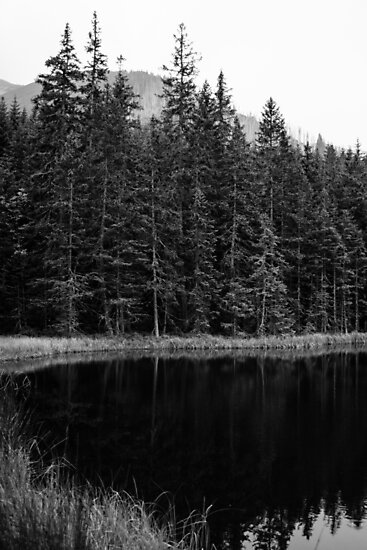 Black and White Lake by PatiDesigns