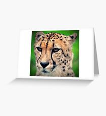 Mean Cheetah Greeting Card