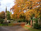 Autumn in a Chester Cemetery by AnnDixon