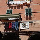 Cinque Terre Washday by joycee