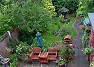 Aerial View of My Small Garden by AnnDixon