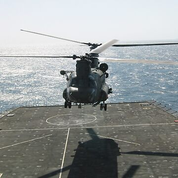 CHINOOK AT SEA by VinArt