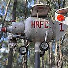 Hunter Valley Airshow 2019 - Aeroplane Sculpture by muz2142
