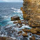 Sea Cliff, Eaglehawk Neck, Tasmania #2 by Chris Cobern