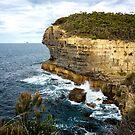 Sea Cliff, Eaglehawk Neck, Tasmania by Chris Cobern