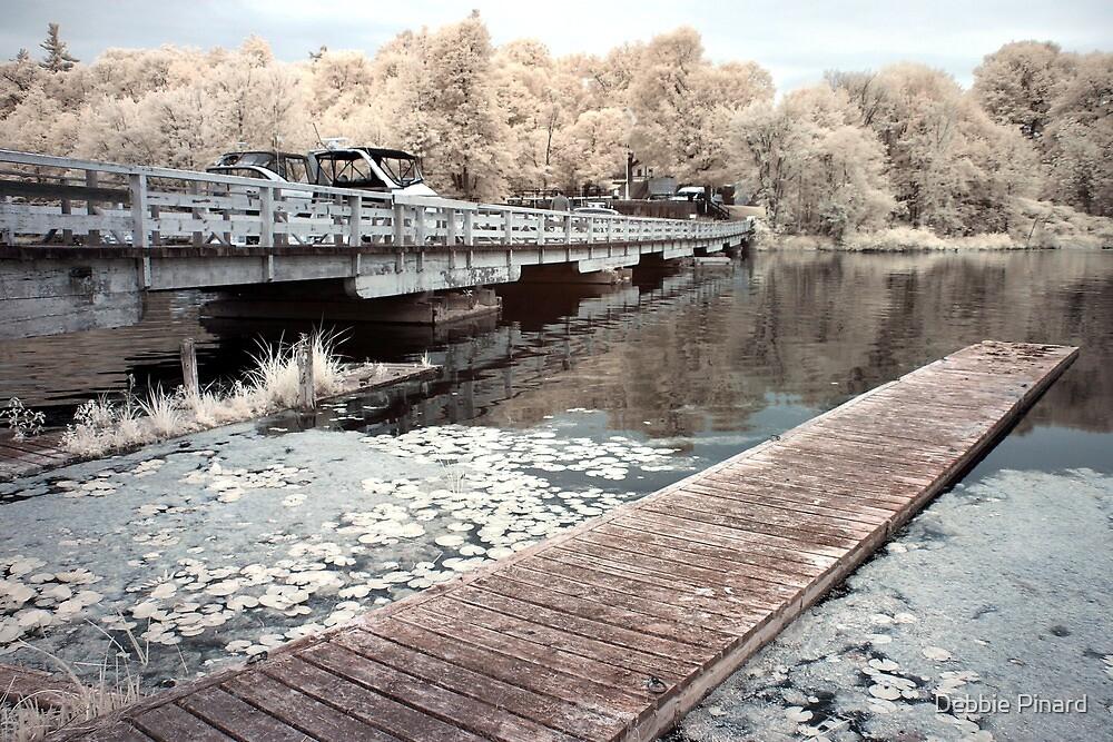 The Old Dock, Jones Falls Ontario by Debbie Pinard