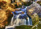 River Flows by Svetlana Sewell