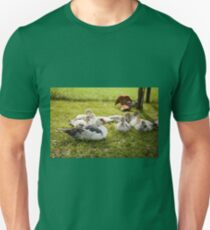 Muscovy Duck young birds group T-Shirt