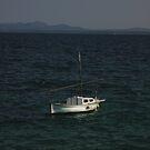 Adrift by Doug Cook