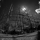 Abandoned Roller Coaster by Luca Renoldi