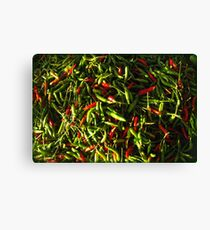 SPICY CHILIES Canvas Print