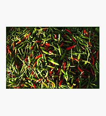 SPICY CHILIES Photographic Print