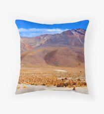 Small Zorro - Large Volcano - Uyuni National Park Throw Pillow