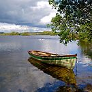 Peaceful moment in Connemara by Alex Cassels