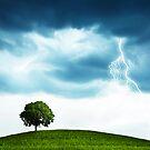 Storm and tree by Olga Altunina