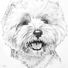 Happy West Highland White Terrier by BarbBarcikKeith
