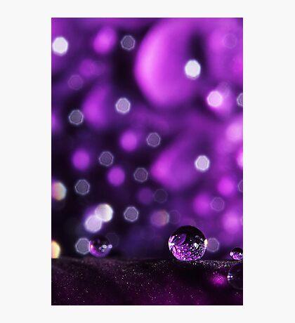 Purple Patchwork Photographic Print
