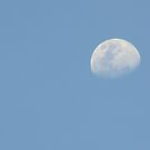 Afternoon Moon by Vanessa Barklay