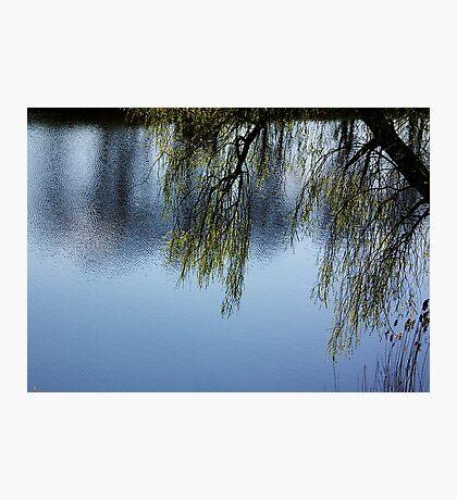 Trench Photographic Print