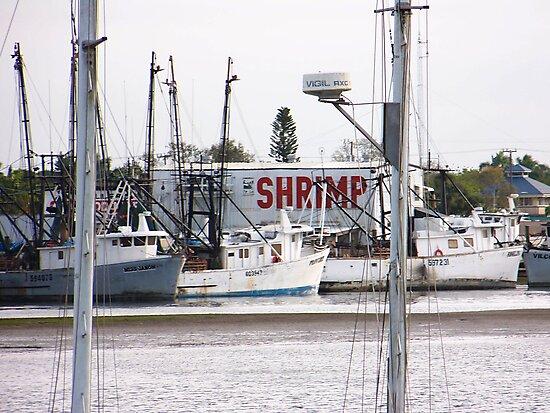 Shrimpboats at Rest  by Jason Hester