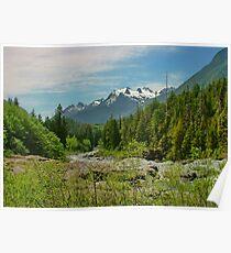 Mount Washington, Vancouver Island BC, Canada Poster