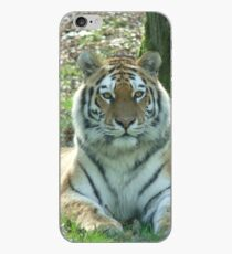 Tiger Photographic image iPhone Case