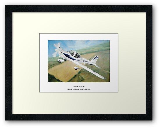 Grob Tutor Aviation Art by Antony Lakey
