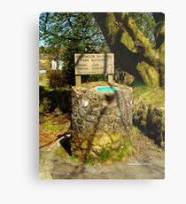 Parking Meter in Dartmoor Metal Print
