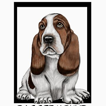 basset hound by fitztown