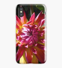 Bright Colors iPhone Case/Skin