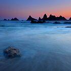 Seal Rock Dusk by DawsonImages