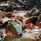 Creek by Dave Callaway
