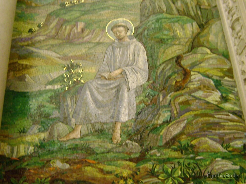 St Francis Mosaic, St. Matthews Cathedral by CynthiaButler
