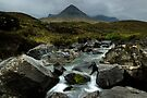 The Cuillin Mountains by Michael Treloar