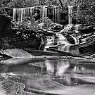 Somersby Falls, monochrome by bazcelt