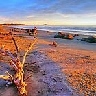 Moeraki Sunrise by Harry Oldmeadow