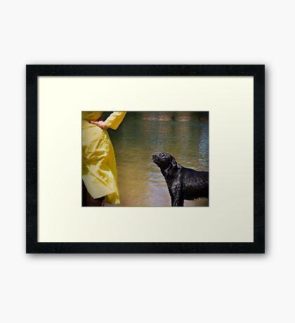 Freddie-on-Thames Framed Print