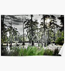 Sam Houston Swamp-3 Poster