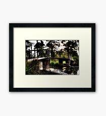 Swamp Bridge Framed Print