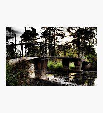 Swamp Bridge Photographic Print