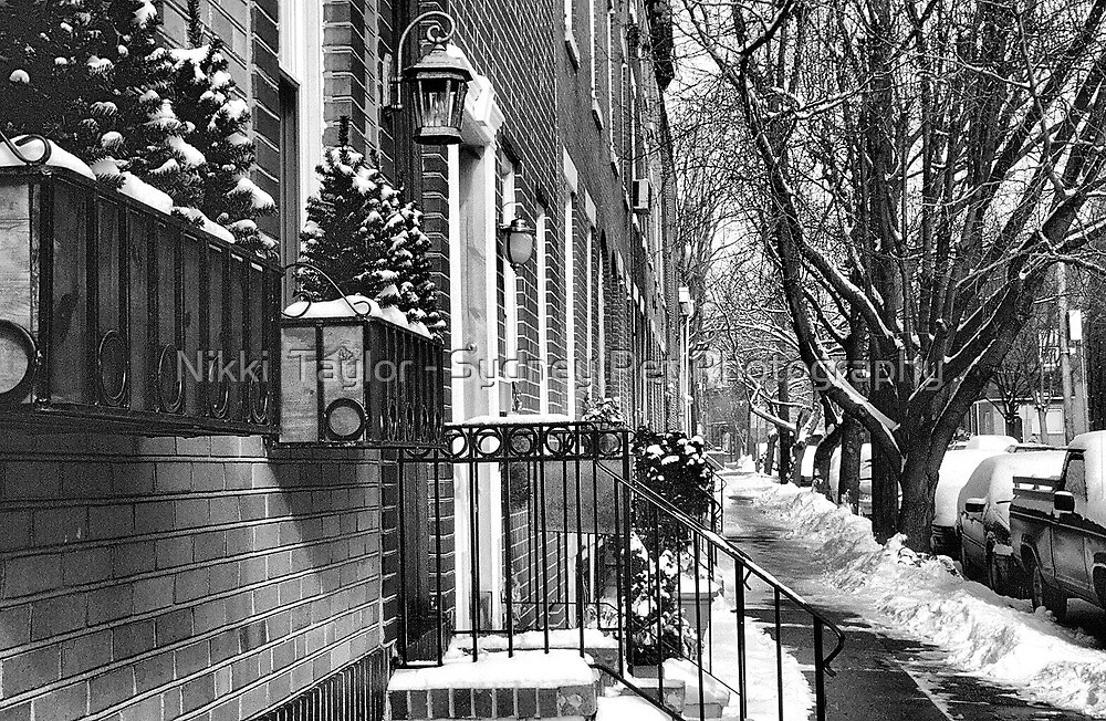streetscape in the snow by Nikki  Taylor - Sydney Pet Photography