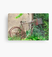 She rode over for tea, and decided to stay ... Metal Print