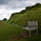 The Lone Bench by bambiisme